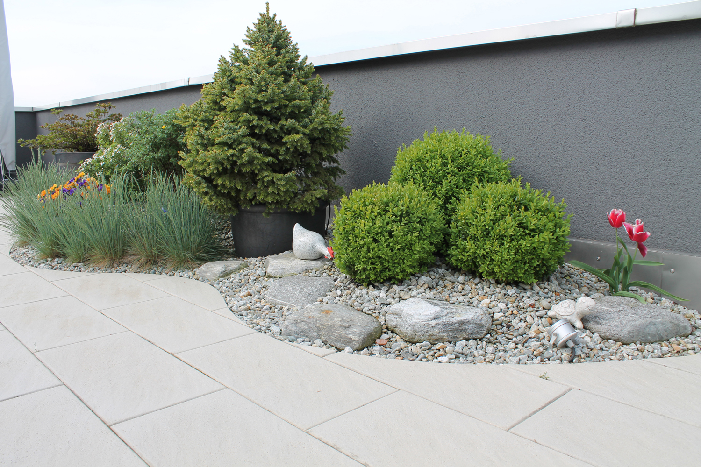 Kundengarten Boswil Berger Gartenbau